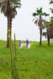 在海滩附近的愉快的夫妇戏剧, 图库摄影