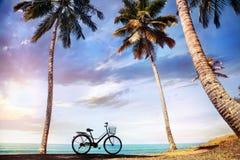 在海洋附近的自行车 库存图片