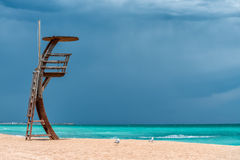 在海滩 免版税库存照片