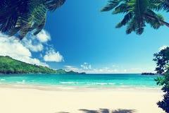 在海滩Takamaka, Mahe海岛的日落 免版税库存照片