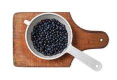 在浸染工的蓝莓 库存照片