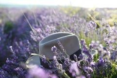 在淡紫色领域的帽子,选择聚焦 在淡紫色领域的日出 旅行,休闲,秀丽的概念 ?? 普罗旺斯, 免版税库存图片