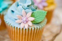 在淡色的杯形蛋糕选择 免版税库存图片