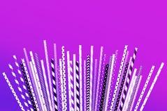 在淡色背景的五颜六色的紫色秸杆收藏 免版税库存图片
