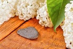在淡紫色绽放旁边的心形的灰色石头 图库摄影