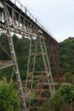 在深的一座非常高钢路轨桥梁,树排行了谷 库存照片
