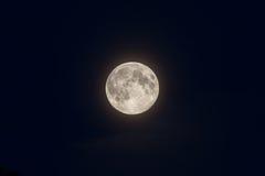 在深蓝天的满月 免版税图库摄影