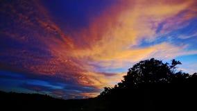 在深蓝天空的橙色日落云彩在热带森林 影视素材