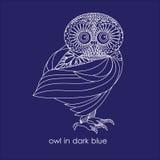 在深蓝的猫头鹰 免版税库存照片