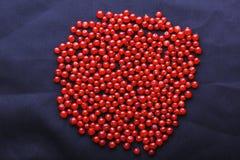 在深蓝背景的明亮的红浆果 很多成熟,水多,新鲜的无核小葡萄干 从莓果的夏天构成 免版税图库摄影