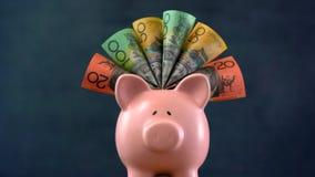 在深蓝背景的桃红色存钱罐金钱概念 免版税库存照片