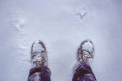 在深雪的起动 库存照片
