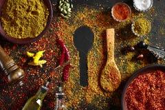 在深黑色背景的被分类的香料 食物的调味料 咖喱,辣椒粉,胡椒,豆蔻果实,姜黄 顶视图 免版税库存图片