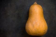 在深绿织地不很细背景,万圣夜,感恩的金瓜椭圆形的橙色南瓜 免版税库存图片
