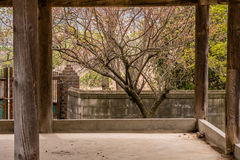 在混凝土墙后的老被盖的亭子 免版税库存照片