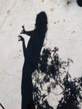 在混凝土的妇女阴影与下落的叶子 库存图片