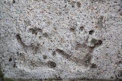 在混凝土设置的ChildÂ的handprints 免版税图库摄影