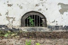 在混凝土建筑的边的透气 库存照片