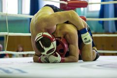 在混杂的武术的伏尔加联邦管区冠军…… 免版税图库摄影