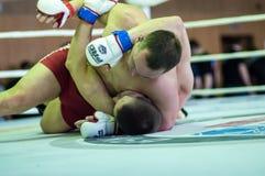 在混杂的武术的伏尔加联邦管区冠军…… 免版税库存图片