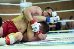 在混杂的武术的伏尔加联邦管区冠军…… 库存照片