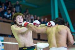 在混杂的武术的伏尔加联邦管区冠军… 库存照片
