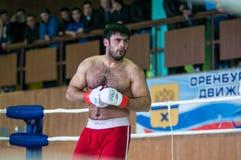 在混杂的武术的伏尔加联邦管区冠军… 库存图片
