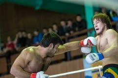 在混杂的武术的伏尔加联邦管区冠军… 免版税库存照片