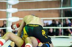 在混杂的武术的伏尔加联邦管区冠军… 免版税库存图片