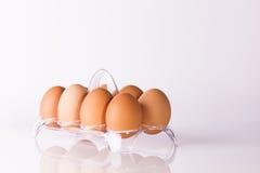 在清楚的塑料篮子的鸡蛋 免版税图库摄影