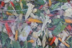 在清楚的塑料里面的油煎的菜 免版税库存图片