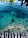在清楚的大海上的木跳船 免版税库存图片