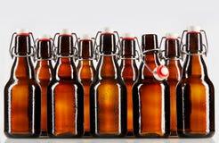 在清楚的棕色未贴标签的瓶包装的啤酒 免版税库存图片