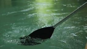 在清楚的水特写镜头的桨划船,浪漫小船旅行,活跃休闲 影视素材