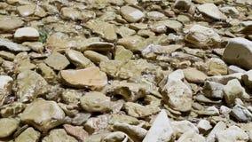 在清楚的水的小卵石背景 股票视频