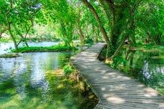 在清楚的淡水水池的木板走道在Krka国家公园克罗地亚 免版税库存图片