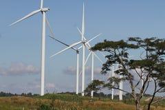 在清楚的蓝天,可更新的电能量,在绿色领域, e的能承受的保护力量发展概念的风轮机 库存图片
