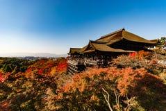 在清水寺寺庙的木平台在秋天 库存图片