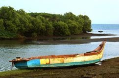 在渔夫的老小船供以人员与美洲红树树的海滩 免版税图库摄影