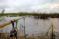 在渔的转动的特写镜头在湖 免版税库存图片