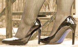 在渔网长袜的性感的腿 库存照片