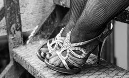 在渔网长袜的性感的腿 免版税图库摄影