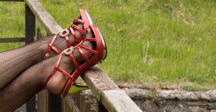 在渔网长袜的性感的腿 库存图片