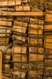 在温和的ste后墙壁被砍和被堆积的木柴柴堆  库存图片