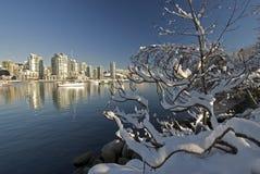在温哥华之下的小河错误雪 图库摄影