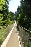 在温哥华的北部岸的Capilano桥梁 库存照片