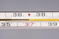 在温度计的健康温度 库存图片
