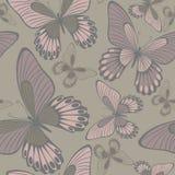 在温暖的中性Backround无缝的样式的蝴蝶 免版税库存照片