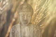 在温暖的太阳的菩萨雕象 免版税库存图片