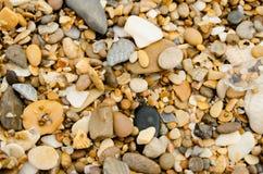 在温暖的颜色的海石头 免版税库存图片
